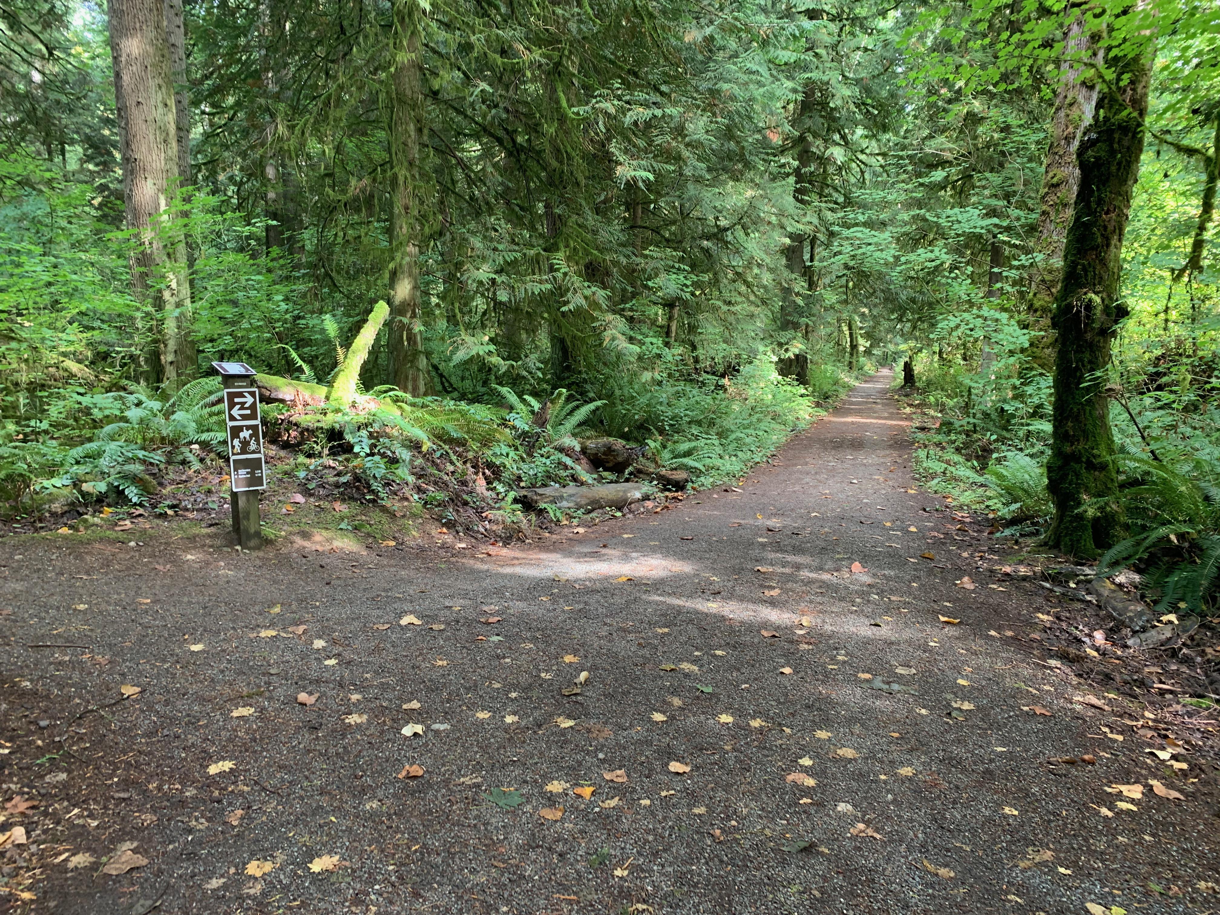 Redmond Watershed trail
